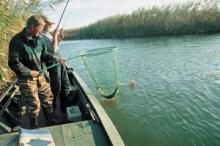 Что должен знать настоящий рыболов