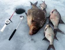 Ловля леща зимой на Сурском водохранилище