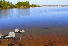 Матчевая ловля на мелководье