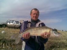 Зимняя рыбалка на Иртыше